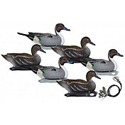 Hard Core Pre-Rigged Pintail Floating Decoys – 6 Pack